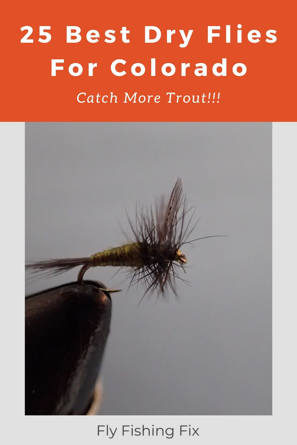 18 Pack Winged Ant Traditional Ants Dry Trout Fishing Flies Griffiths Gnat
